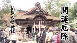 開運厄除 柏原八幡神社(兵庫県・柏原町)