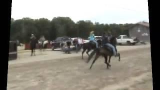 SHOBA 2008 at East Fork Stables, Jamestown, TN