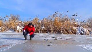 РЫБАЛКА НА ФОРЕЛЬ СО ЛЬДА И НА СУДАКА НА СПИННИНГ. Зимняя рыбалка.