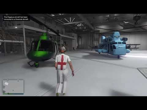Gta 5 online save Pegasus Aircraft with unobtainable paints in the Hangar
