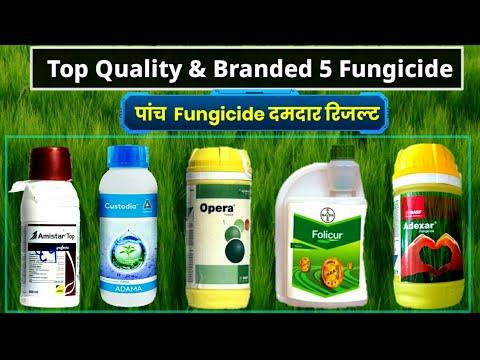 Top Quality & Branded 5 Fungicide | Azoxystorbin, Difenconoz,Epoxiconazole,Fluxapyroxad,Tebuconozole