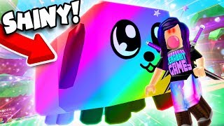 SHINY RAINBOW DOGCAT SECRET PET! 🐶🐱 (Roblox Bubble Gum Simulator)
