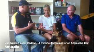 Aggressive Dogs And Remote Dog Training Collar Reviews In Australia