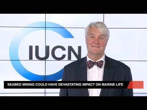 Seabed Mining Goldrush