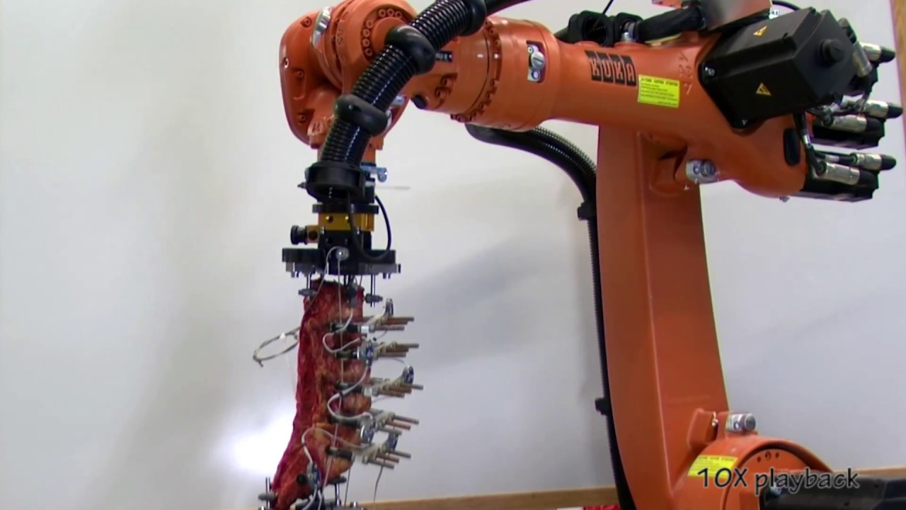 Cleveland Clinic BioRobotics Lab - Spine Musculoskeletal Simulator HD