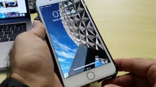 iPhone 7 plus depois de 3 meses de uso