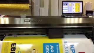 Широкоформатная печать в типографии «Sprinter»(Типография «Sprinter» оказывает услуги по изготовлению рекламной продукции методом цифровой широкоформатной..., 2014-07-16T12:11:25.000Z)