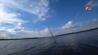 На рыбалку так по полной майские щуки караси