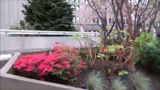 #581 США Вашингтон Город Сиэтл Еду в поезде Иду в посольство Часть 1(Я еду в поезде из аэропорта в город, потом иду по городу до российского посольства и показываю вам Сиэтл., 2015-03-27T07:48:57.000Z)