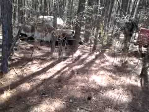 leo & dustin pulls car out of woods