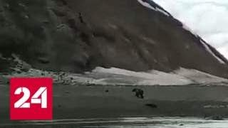 'Беги, Серега!': очевидец снял на видео фатальную встречу рыбака с медведем - Россия 24