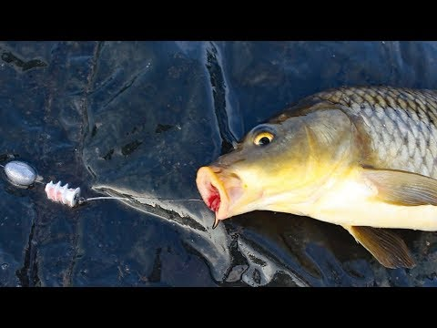 hook up bait & tackle ferntree gully vic