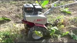 Мотоблок МКМ 3 на посадке и обработке картофеля
