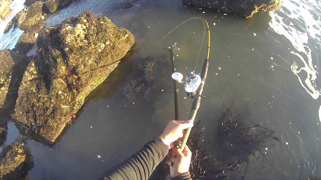holiday pocket fishing