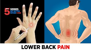 Sujok Treatment for Lower Back Pain,😖🔥 Lumbar Pain, Slipped Disk, Lumbar spondylosis