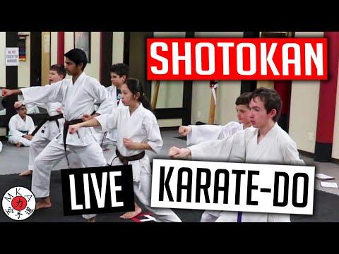 Shotokan Karate Training Live