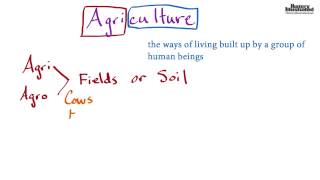 Agriculture  Definition for Kids
