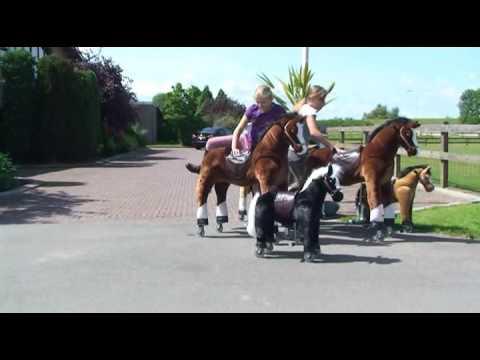 Animal riding het speelgoedpaardje dat echt kan lopen for Nep fruit waar te koop