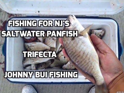 Fishing For New Jersey's SALTWATER PANFISH SLAM, NJ