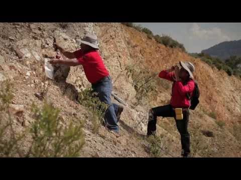 The Mexican Geological Survey