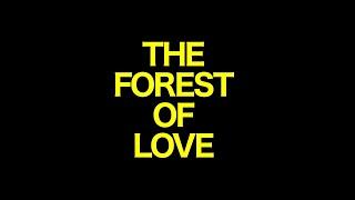 scorpio prodz - The Forest Of Love