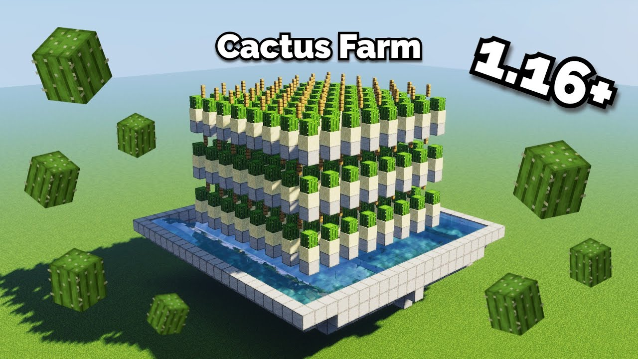 How To Make a Cactus Farm Minecraft 1.16 (UNLIMITED CACTUS) - YouTube