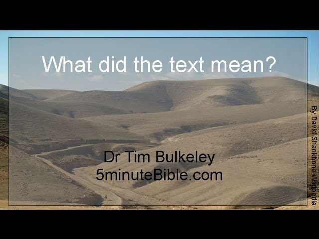 What DID the text mean? - 5 minute Bible