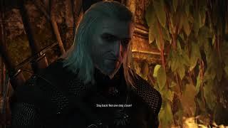 The Witcher 3: Wild Hunt_20170915150442