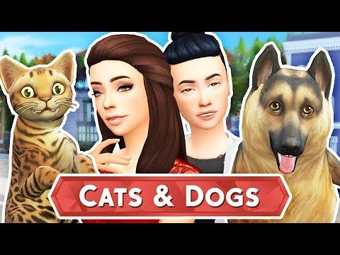 THE SIMS 4 CATS & DOGS - BUILDING OUR VET #1