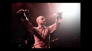The Tragically Hip - Wild Mountain Honey