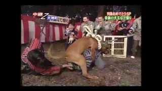 たけし軍団 土佐鬪犬
