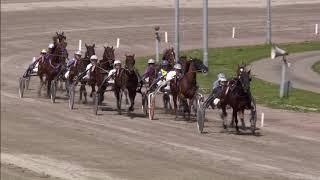 Vidéo de la course PMU PRIX SCHOTTE VASTGOED