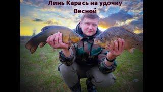 Ловля Карася и Линя на поплавок Новый конкурс вот вот рыбалка карась линь конкурс