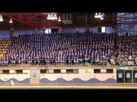 St Mary's DSG D&D 2017