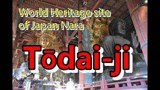 東大寺(とうだいじ)は、奈良県奈良市雑司町にある華厳宗大本山の寺院...