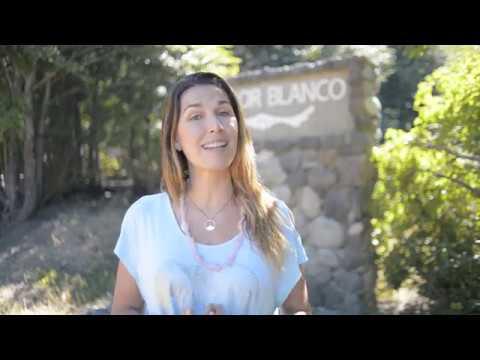 Supere-se e manifeste a vida que você merece  - Love+BeLoved - Chile 2020