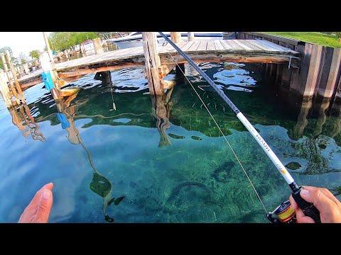 Kayak Fishing Ultra Clear Lake (Jig Action)