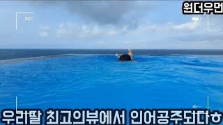 감포 전망좋은 수영장 카라반추천