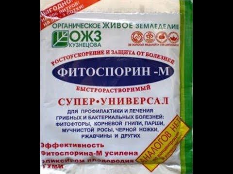 Фитоспорин и др.препараты для защиты растений от вредителей и болезней.