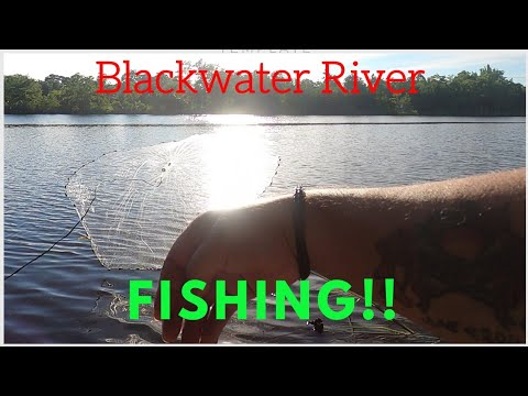 River Bank Fishing- WEIRD FISH!!!