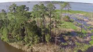Blackwater Wildlife Refuge by Air