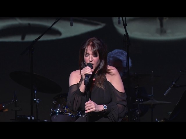 Top of the World   A Carpenters Tribute (Live)