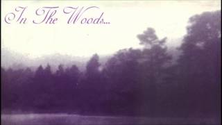 In the woods - Yearning the seeds of a new dimension