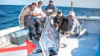 Catching WORLDS Most EXPENSIVE Fish!! (Catch and Sell 400 POUND Blue Fin TUNA)