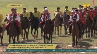 В чемпионате РК по национальным конным видам спорта учавствуют более 300 участников