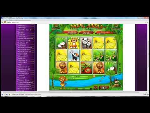 Tropic Jungle Spieldgeld Casino Community Casoony Mit 100 Freispielen Anmeldebonus