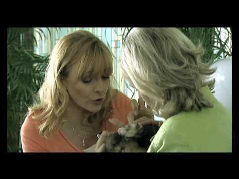 Rodinné Tajomstvá 11-12 (TV series, Slovakia, STV, 2005)