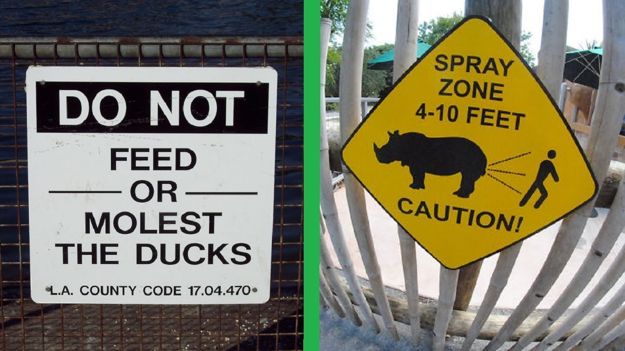 the funniest signs at the zoo that will make you laugh youtube