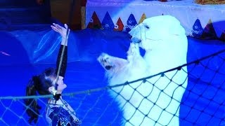Trained Bears Amaze in Sochi