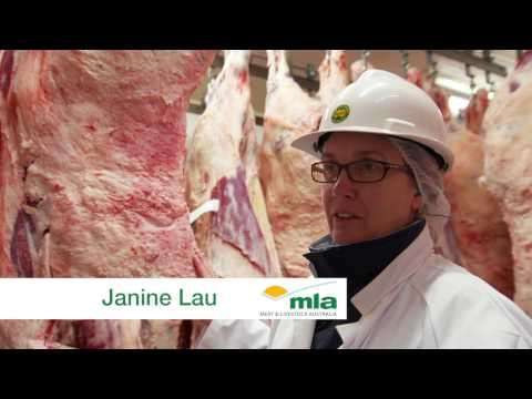 MSA Grading Beef